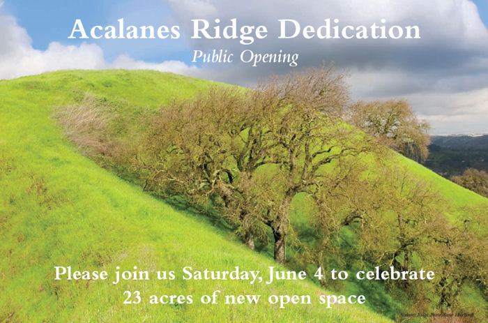 Acalanes Ridge invitation